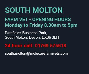 Molecare Veterinary Services South Molton