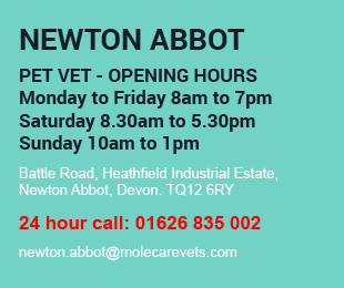 Molecare Veterinary Services Newton Abbot