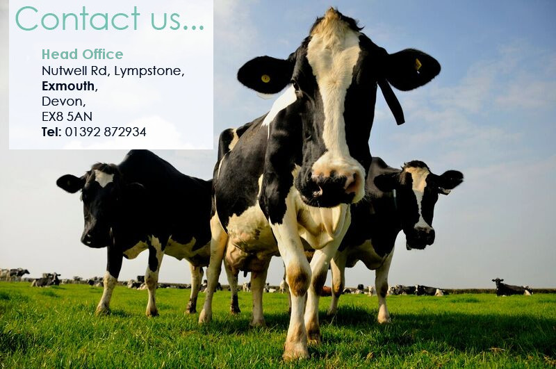 Contact Molecare Farm Vets Headoffice. Nutwell Road, Lympstone, Exmouth, Devon, EX8 5AN. Tel 01392 872934