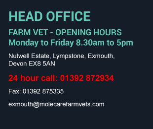 MoleCare Vets Head Office Contact Details